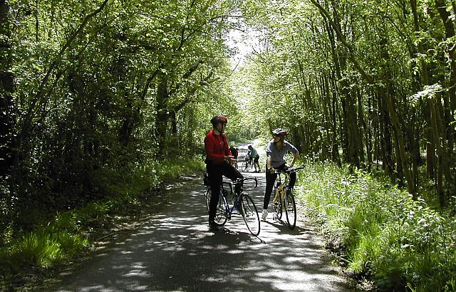 Cyclists in a country lane