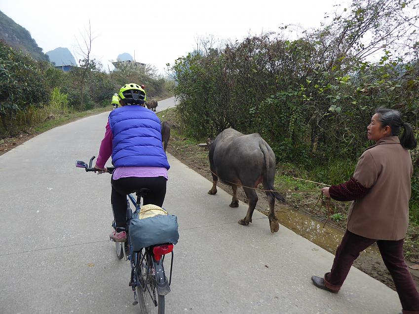 Day ride near Yangshuo