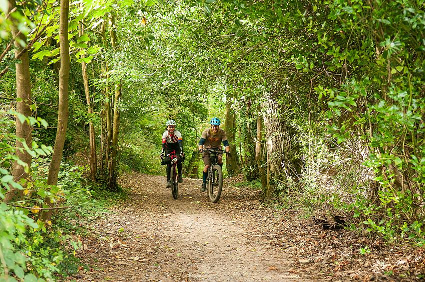 Two people cycling through woods