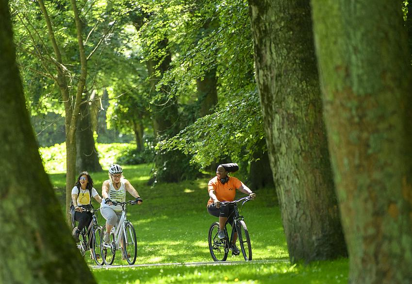 Women cycling through trees in a park