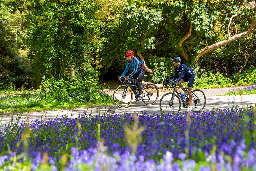 Two men cycle past bluebells in the foreground
