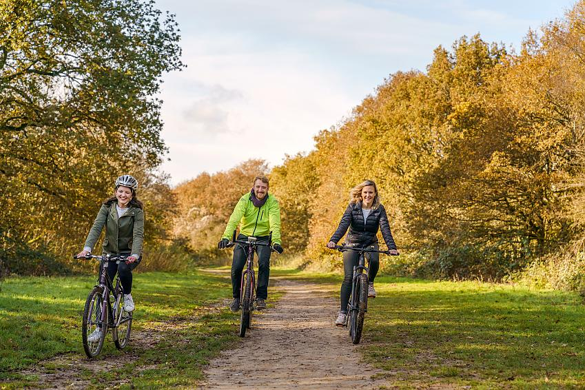 Three people cycle along a woodland trail among autumn colours
