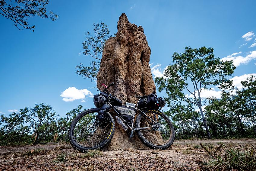 Cathedral termite mound-surprise at Creek Reynolds river track