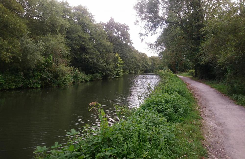 Cycling home along the river Wey